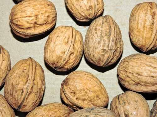 ¿Cuántas calorías tienen las nueces? ¿Engordan realmente?