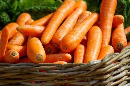 ¿Cuántas calorías tienen las zanahorias?