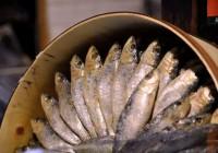 ¿Cuántas calorías tienen las sardinas?