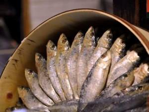 Calorías de las sardinas