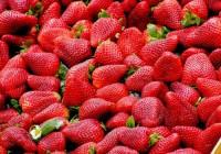 ¿Cuántas calorías tienen las fresas?