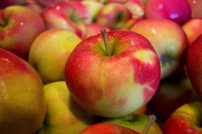 Manzanas variadas pero con las mismas calorías