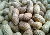 ¿Cuántas calorías tienen los cacahuetes? ¿Realmente importa?