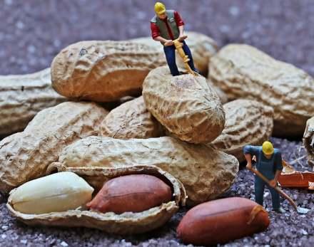 Punado de cacahuetes