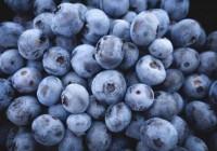 Arándanos: Pocas calorías y muchos beneficios