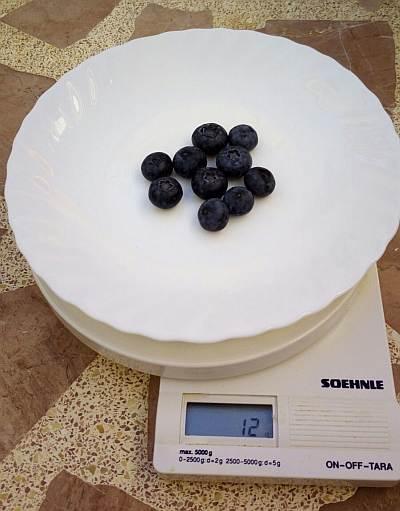 Cuánto pesan 10 arándanos