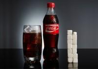 Coca-Cola pagó 146.688 euros a la Fundación Española de Nutrición en 2017