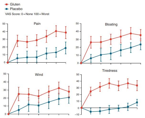 Sensibilidad al gluten no-celiaca