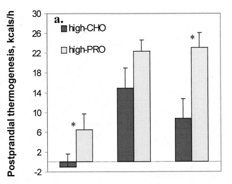 La proteína produce más termogénesis