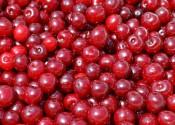 ¿Cuántas calorías tienen las cerezas?