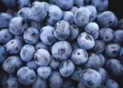 Arándanos: Pocas calorías (lo cual no importa tanto) y mucha densidad nutricional (esto sí)